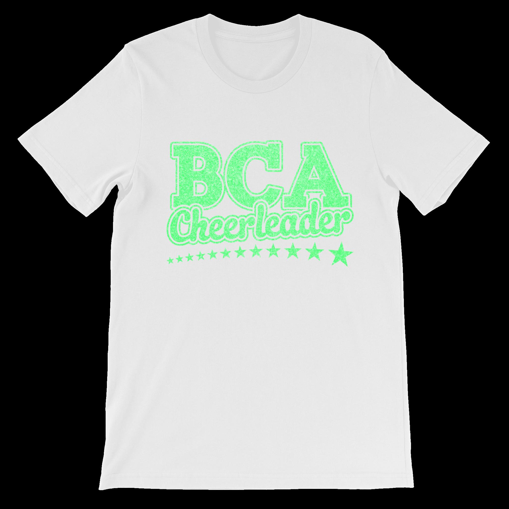 BCASCV001-13